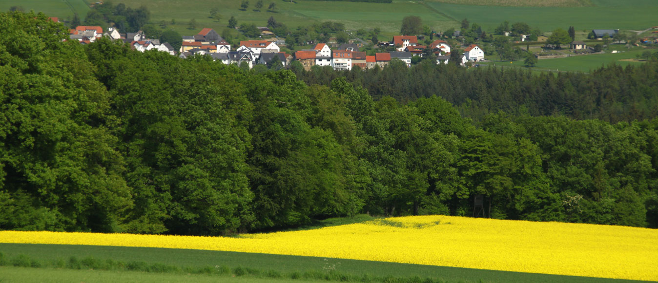 Wetter Grävenwiesbach